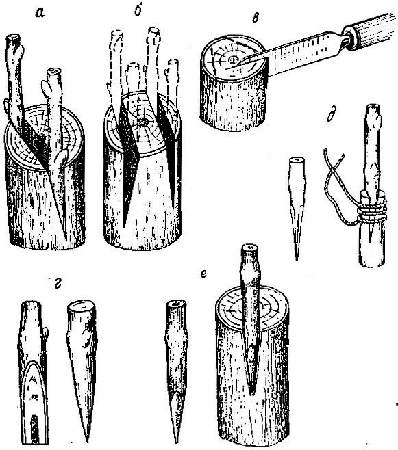 http://wine.historic.ru/books/item/f00/s00/z0000000/pic/000040.jpg