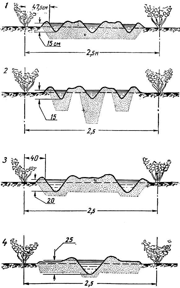 Схемы размещения борозд, нарезанных машиной ВУМ-60, в различной комплектовке: 1 - чизель-культиватором; 2...