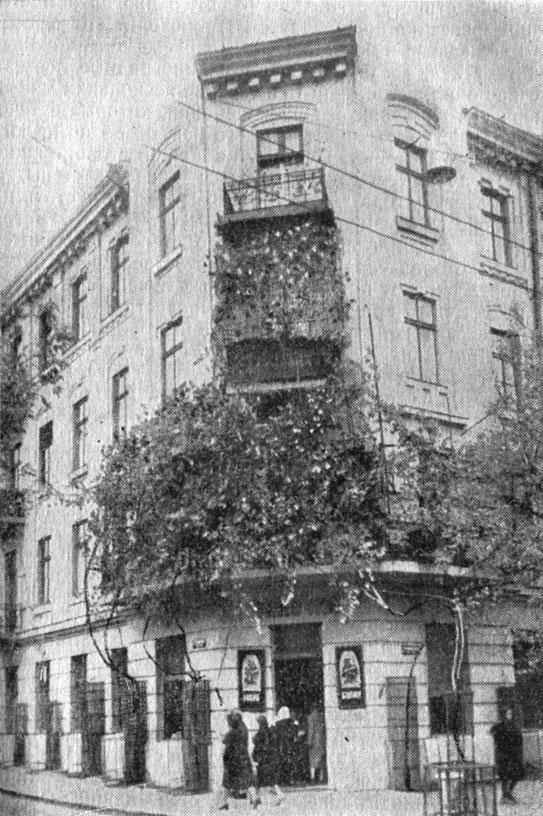 Рис. 16. Виноград на стенах одного из домов на ул. Толстого в Одессе. Кусты взобрались на балконы четвертого этажа