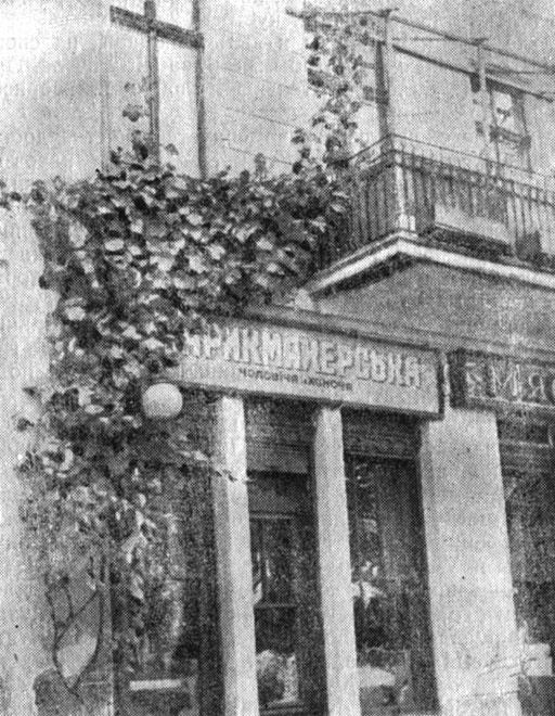 Рис. 18. Пристенный куст винограда на ул. Ленина г. Одессы